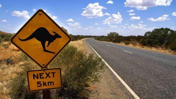 size_810_16_9_placa-canguru-australia